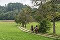 Pörtschach Winklern Gaisrückenfahrweg Am Kåte Birnbaumallee Reiterinnen 25082019 7048.jpg