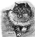PSM V37 D107 Persian cat at the crystal palace cat show 1886.jpg