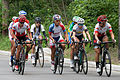 Panam Games 2015 Women's Road Race(19819285349).jpg