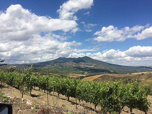 Panorama con Vigneto Monte Vulture