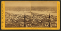Panorama of Portland and the Willamette River, Oregon, by Watkins, Carleton E., 1829-1916 4.png