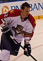 Panthers vs Blues-8419 (6448902061).jpg