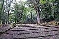 Parco di pratolino, fontana di giove (da bandinelli) 01.jpg