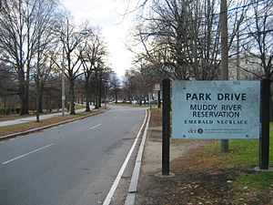 Park Drive (parkway) - Easternmost end of Park Drive near Boylston Street.