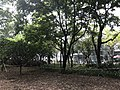 Park near headquarters of Neptunus Group 1.jpg