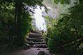 Parque Nacional Huerquehue - Flickr - czdiaz61 (2).jpg