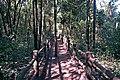 Parque Nacional de Brasília (14522535936).jpg