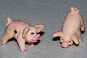 Pass The Pigs Dice