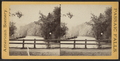Passaic Falls, from Robert N. Dennis collection of stereoscopic views 3.png