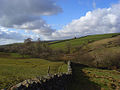 Pastures, Stainmore - geograph.org.uk - 1245009.jpg