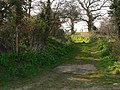 Path - geograph.org.uk - 377388.jpg