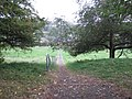 Path from church to village - geograph.org.uk - 1529182.jpg