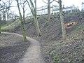 Path in London Road Gardens, looking westwards - geograph.org.uk - 1727213.jpg