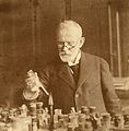 Paul Ehrlich. Photograph, 1915. Wellcome V0026328.jpg