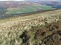 Peaknaze Moor - geograph.org.uk - 1003417.jpg
