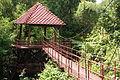 Peninsular Botanical Garden (Thung Khai) DSC 0459.JPG