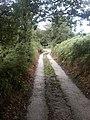 Pennine Bridleway, Birch Vale - geograph.org.uk - 221309.jpg