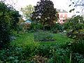 Petit jardin en automne - Jardin des Plantes.JPG