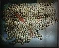 Phnom Penh-Tuol Sleng Genozid-Museum-20-Landkarte-2007-gje.jpg