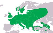 Picus viridis dis.png