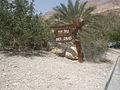 PikiWiki Israel 15824 Nahal David.jpg