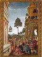 Pinturicchio, san bernardino richiama alla vita un uomo morto trovato sotto un albero.jpg