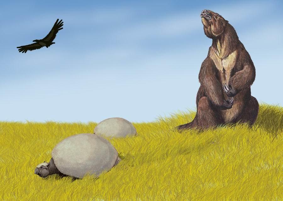 Pleistocene SA