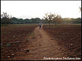 Ploughed fields with red earth.jpg