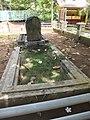 Plumeria sp. les fleurs jonchent les tombes d'un cimetière du Sri Lanka.jpg