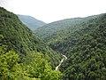 Pogled sa Gole Kose niz Neretvicu - panoramio.jpg