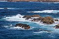 Point Lobos 20.JPG