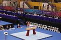 PommelHorse-YOGArtisticGymnastics-BishanSportsHall-Singapore-20100816-02.jpg