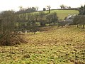 Pond, Harberton - geograph.org.uk - 1160911.jpg