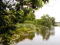 Pond at Midhilapuri VUDA Colony 01.jpg