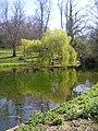 Pond in Holywells park. - geograph.org.uk - 1811876.jpg
