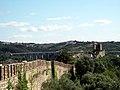 Pormenor das Muralhas do Castelo de Óbidos (2).jpg
