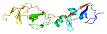 Protein LMO4 PDB 1rut.png