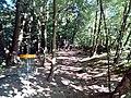 Ptačí čtvrť, 742 21 Kopřivnice, Czech Republic - panoramio (9).jpg