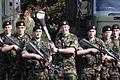 Pte Eoin Larkin Kilkenny Hurler (4951365347).jpg