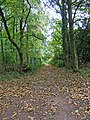 Public bridleway at end of Gothersley Lane - geograph.org.uk - 1658959.jpg