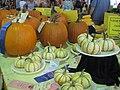 Pumpkins (7805494422).jpg