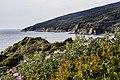 Punta Falcone 015.jpg