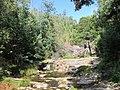 Queda de agua do Pincho - panoramio.jpg