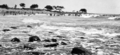 Queensland State Archives 309 Looking north towards the beach at Nielson Park Burnett Shire c 1931.png