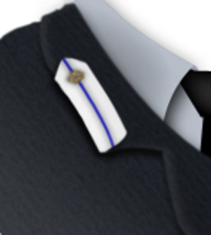 Officer cadet - Rank insignia for RAF officer cadet (service dress)