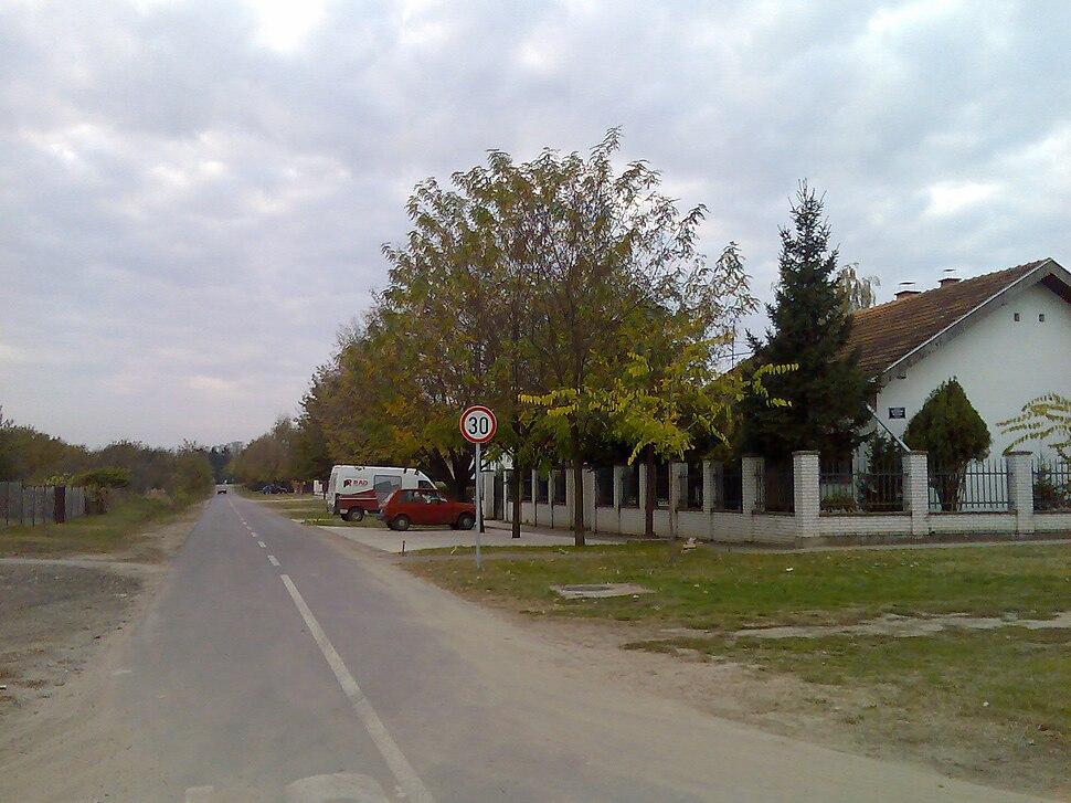 Radanovac Vocarska ulica