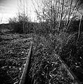 Railway tracks, Whitehorse, Yukon (10470629073).jpg