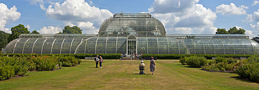 Rear of Palm House, Kew Gardens
