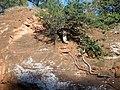 Red Rock Canyon State Park - USA, OK - panoramio (2).jpg