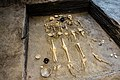 Resti Etruschi antica città di Spina.jpg